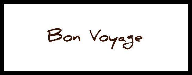 Bon voyage banner